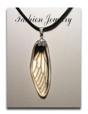 Transparent cicada wing insect necklace aloadofball Choice Image
